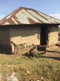 Mud and dung one room home of our student