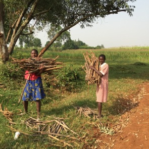 Gathering firewood for cooking and daily bathing can put girls at risk as they are all alone in the fields or hills.