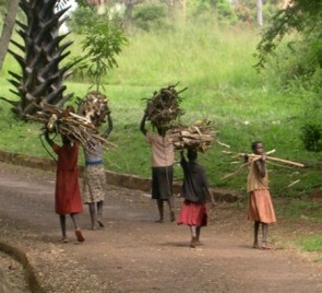 Girls bringing back firewood